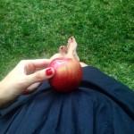 Elma kadar olmu blogcugebe onbeincihafta 15hafta