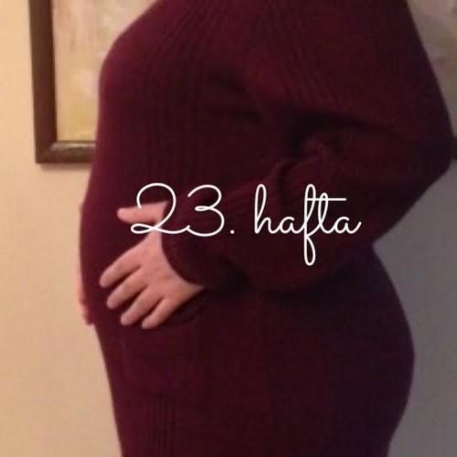 ElifY23