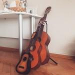 Baba gitar ve yavruları...