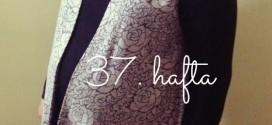 Ayşe Nur'un Gebelik Günlüğü, 37. hafta