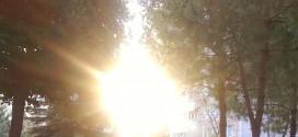 Güneşli Günler