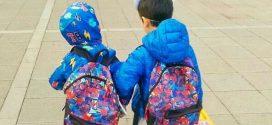 Okul Seçmek ve Deli Sorular